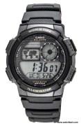 Casio Standard D080 Watch