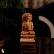 Aapno Rajasthan Carved Buddha