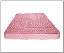 Kurlon Ortho 16316 Mattresses
