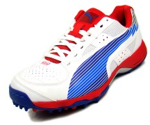 Puma 10264401 Mens Sports Shoes