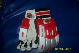 Lions Sports Cricket Gloves