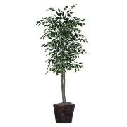 Ficus Artificial Plant