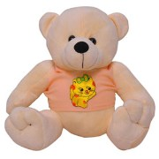 Funzoo with T-shirt Teddy Bear