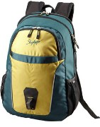 VIP 02 Skybags Turf Laptop Backpack