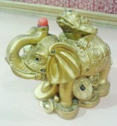 Anjalika Feng Shui Money Frog on Elephant
