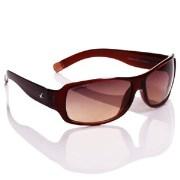 Fastrack P089 Unisex Sunglasses