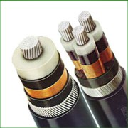 Polycab Wire and Cable