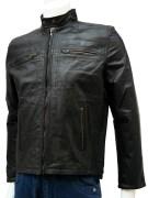 Elegant Leather Jackets