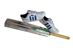 Grey Nicolls E-41 Cricket Bat And Sports Shoes Combo