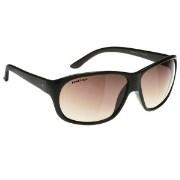 Fastrack P200BR2 Sunglasses