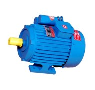 Sri Balaji 3 HP AC Induction Motor