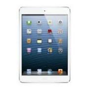Apple ipad Mini 16GB Tablet