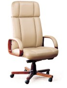 Shakti Udyog Office Chair