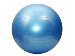Pro Bodyline Fitness Inflatable Gym Ball