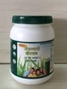 Jivansathi Wheat Grass