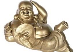 Adorable Laughing Buddha