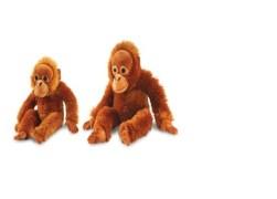 Combo Of Cuddly Orangutan Toy