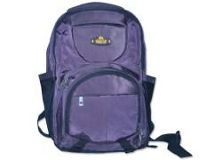 Viviza Laptop Backpack