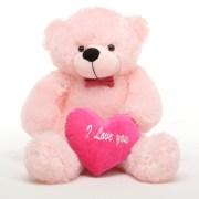 Love Teddy Bear With Heart