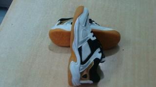 Aryan Sports ASJ-333 Badminton Shoes For Men And Women