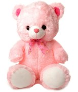 GRJ India Pink Teddy Bear