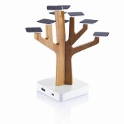 Solar Charger For Mobile Phones