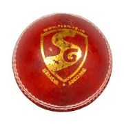 SG Cricket Leather Ball