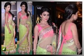 Shreya SaranBright Net bollywood replica saree