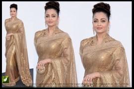 Aishwarya Rai Cannes Award Bollywood Saree
