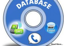 10 Crore Mobile database And E Mail Database With 8 GB Pen drive