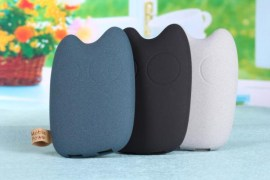 Totoro Stylish 9000mah External Power Bank Battery Charger Dual USB Point